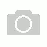 Pebeo Synthetic Brush Set of 8 Assorted